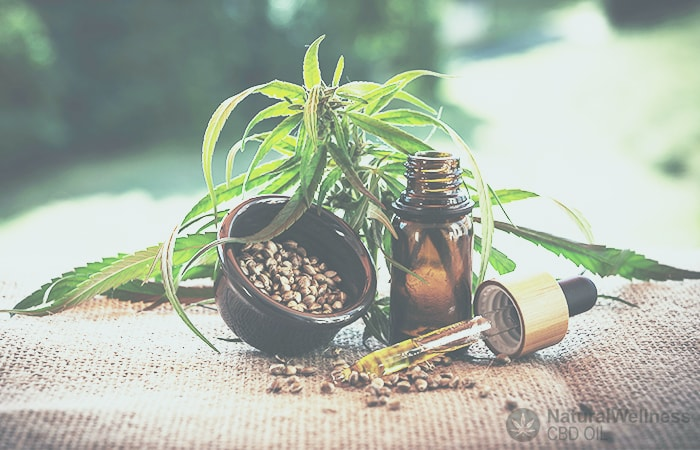 Essential things to consider while buying CBD products